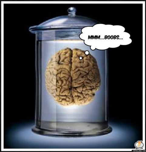 Brain in Vat